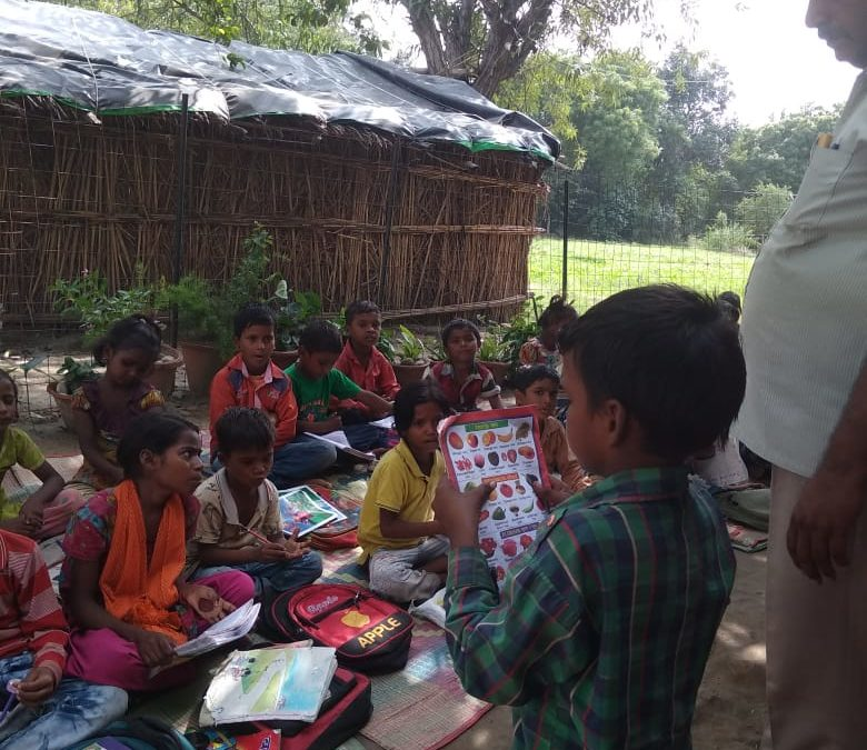 Anou's blog To stand out in the crowd #GivingTuesday #India